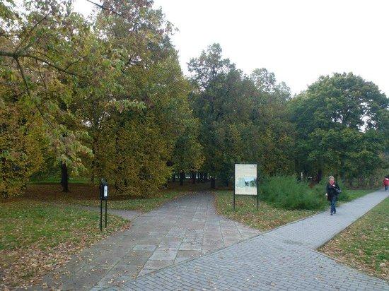 Saxon Gardens: Entrance.