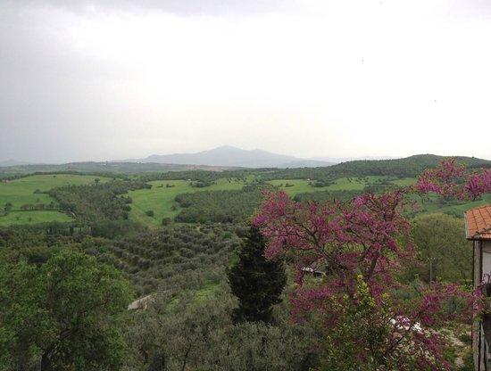 Locanda di CasalMustia: View from behind the hotel