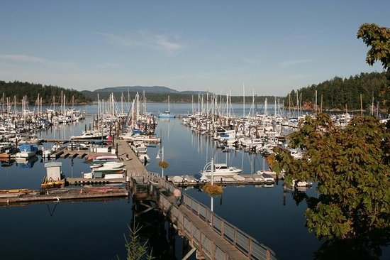 Bed Breakfast Friday Harbor Wa