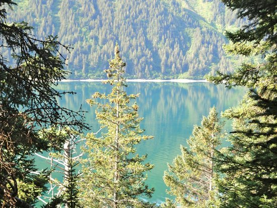 Alaska's Sadie Cove Wilderness Lodge: view from the mountain above sadie cove