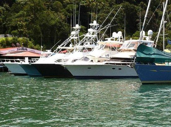 Fish Hook Marina & Lodge