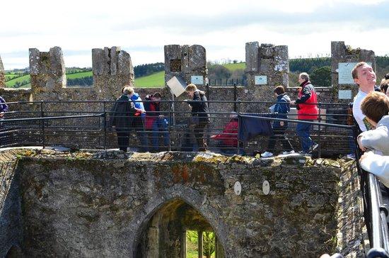 Blarney Castle & Gardens: end of the blarney stone que