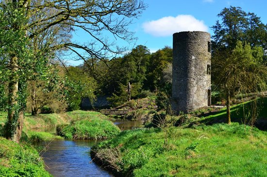 Blarney Castle & Gardens: some of the grounds