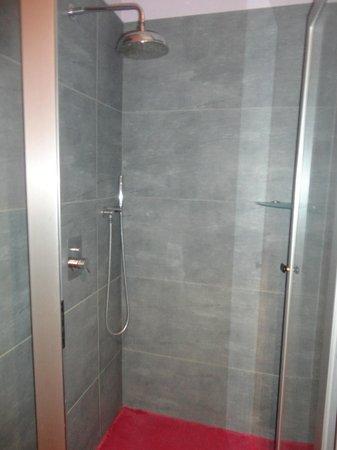 Leonardo Da Vinci: The shower