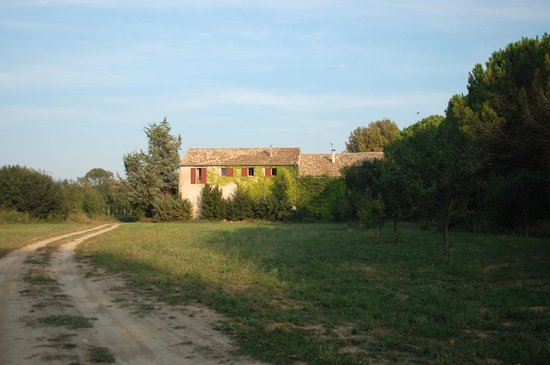 Domaine de Saint Domingue : View from behind the house in the fields