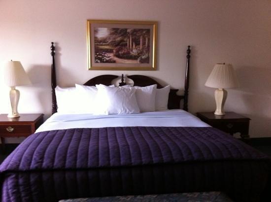 River Terrace Inn : chambre