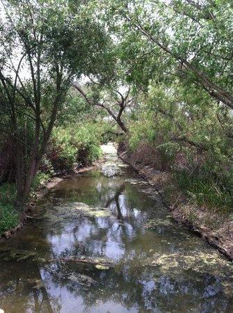 San Joaquin Wildlife Santuary Photo