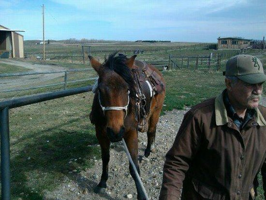 Mountain Meadow Trail Rides : Dan Nelson Owner and Rancher