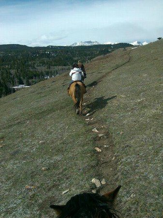 Mountain Meadow Trail Rides : On the trail