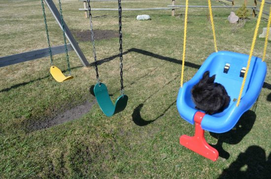 Rocky Ridge Country Lodge: the play area for kids