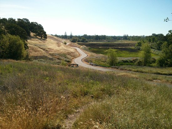 Roseville, Kalifornia: Looking from within Miners Ravine toward Sierra College Blvd