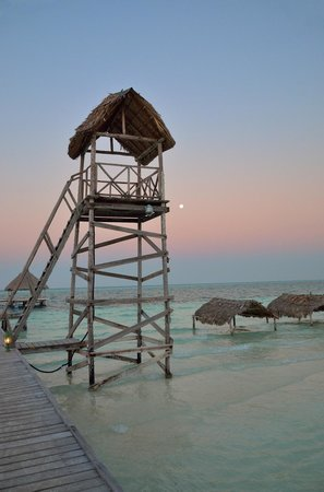 Melia Cayo Guillermo: Tower