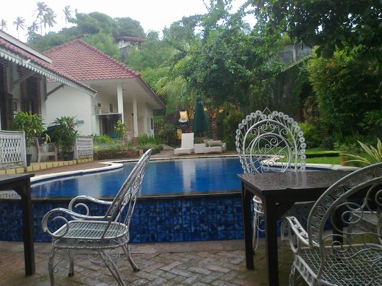 Sendok Hotel: The pool in the day