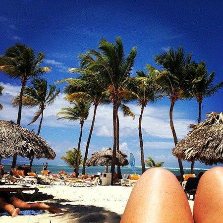 Catalonia Bavaro Beach, Casino & Golf Resort : Paradise
