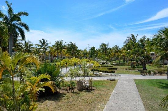 Paradisus Rio de Oro Resort & Spa: Grounds