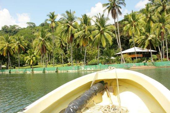 Saladero Eco Lodge : Arriving at Saladero by boat