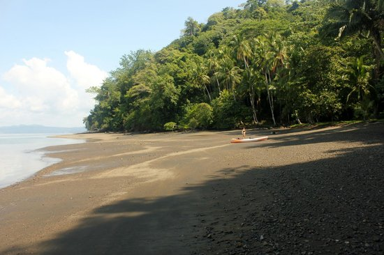 Saladero Eco Lodge: the beach you'll reach after kayaking