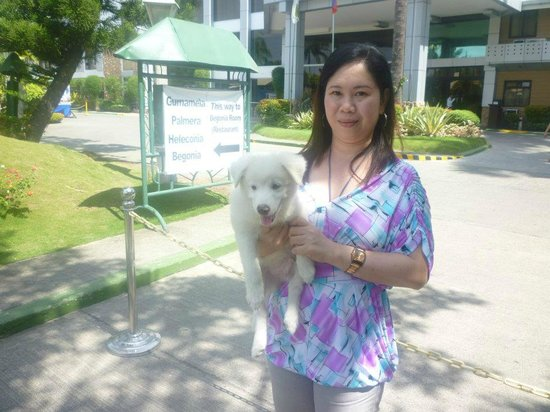 The Ritz Hotel At Garden Oases: with my pet