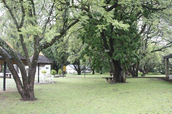 Great Zimbabwe Hotel: Grounds of the hotel