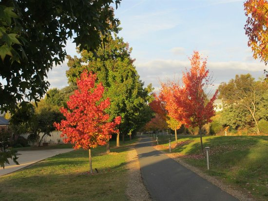 Autumn Glory Cottages: The Rail Trail out front