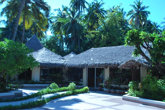 Biyadhoo Island Resort: Restaurant