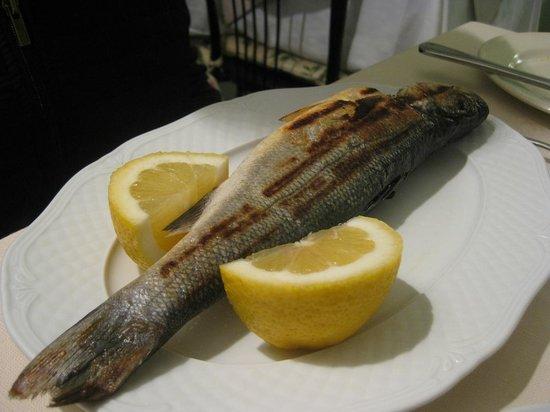 Ristorante Roma da Marcellini: Grilled sea bass