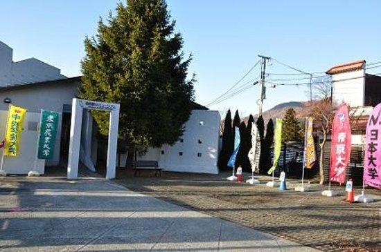 Hakone Ekiden Museum: 箱根駅伝ミュージアム