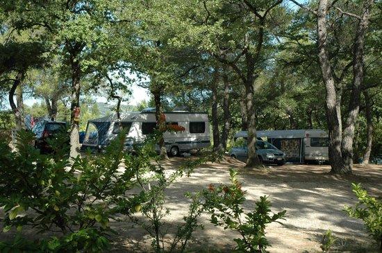 Camping de l'Ayguette: Emplacements de camping