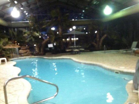 Wyndham Garden Hotel Cross Lanes Charleston : indoor pool area