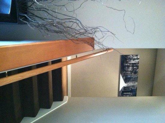 بيرد روك هوتل: Stairway leading up to rooms...