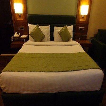 Hotel Deer Parkk: Deluxe Room