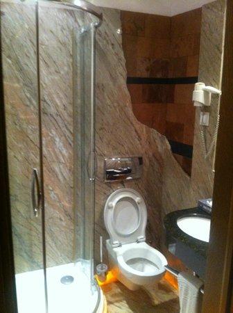 Hotel Rubinstein : bathroom - really small