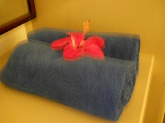 Residence Praslinoise : bagno