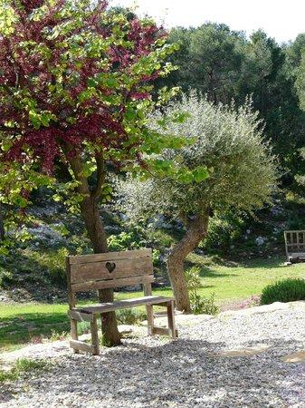 La Desirade: le jardin