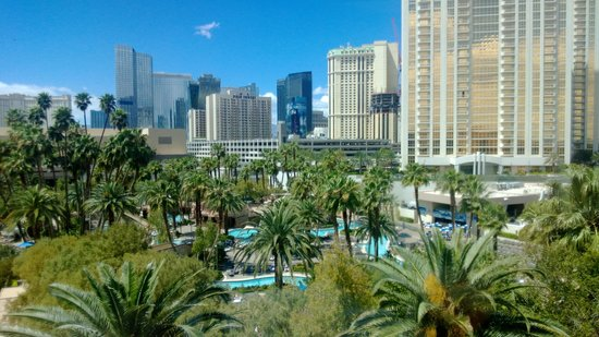 MGM Grand Hotel and Casino: Pool Area