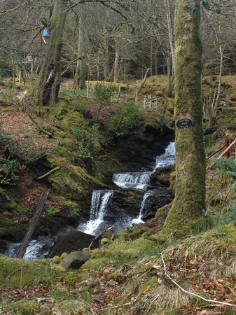 Home Farm Cottages: THE STUNNING WATERFALL BEHIND THE PROPERTY