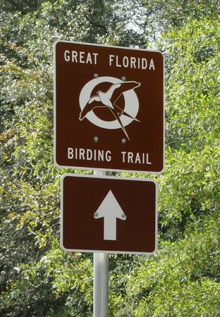 Great Florida Birding and Wildlife Trail: Great Florida Birding Trail road sign