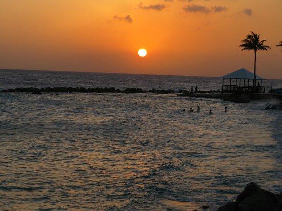 Seabreeze Swim up Bar and Restaurant : Lindo