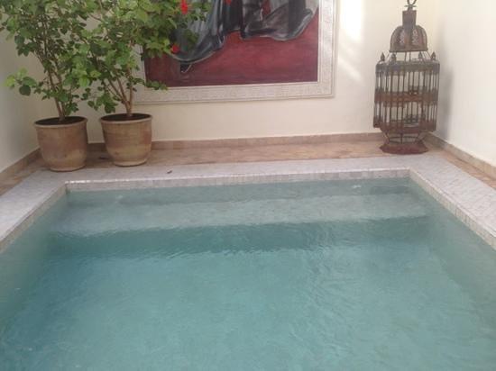 Riad du Ciel: una piccola piscina per rilassarsi!!