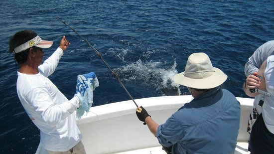 Quepos, Costa Rica: A 90 lb sail fish on the furthest lure.  Not sure who was more tired.
