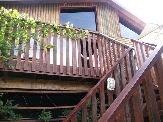 Knysna Tonquani Lodge & Spa: Knysna Loerie