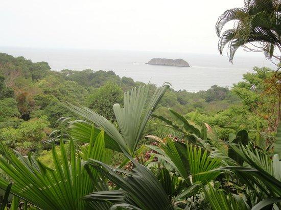 Hotel Villa Roca: VUE DEPUIS LA CHAMBRE 6B
