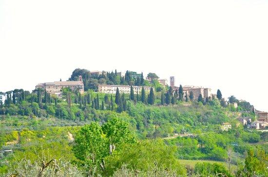 Agriturismo Nobile: Montepulciano