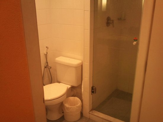 Ibis Maringa : banheiro