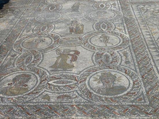 Chrif Trans Volubilis Day Trips: Mosaique a Volubilis