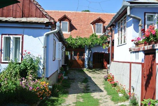 Bunica Eugenia Pensiunea Agroturistica: courtyard