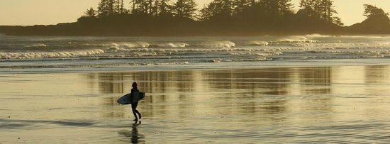 BriMar Bed and Breakfast: Surfer at Sunset