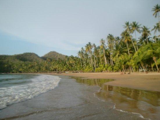 Playa Medina : ...