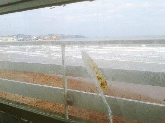 Shoreline: Please clean me!