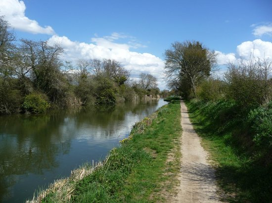 Chichester Ship Canal Trust: A view toward Hunston